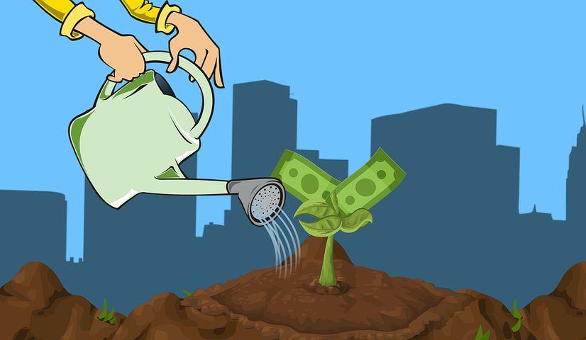 выращиваем капитал долгосрочно